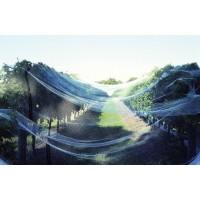 BIRD NET WHITE –  10m X 100M ROLL - GDS176