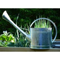 9 LITRE GALANIZED WATERING CAN                              GD306