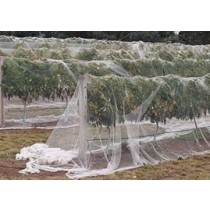 BIRD NET WHITE – 10M X 300M                                       GDS179