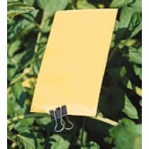 YELLOW STICKY CARD TRAPS – RETAIL                     GPM106