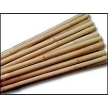 BAMBOO - SMALL TO MEDIUM CANES
