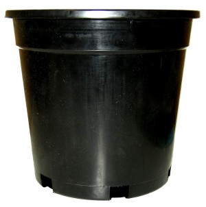 200mm STD BLACK POT GDP102